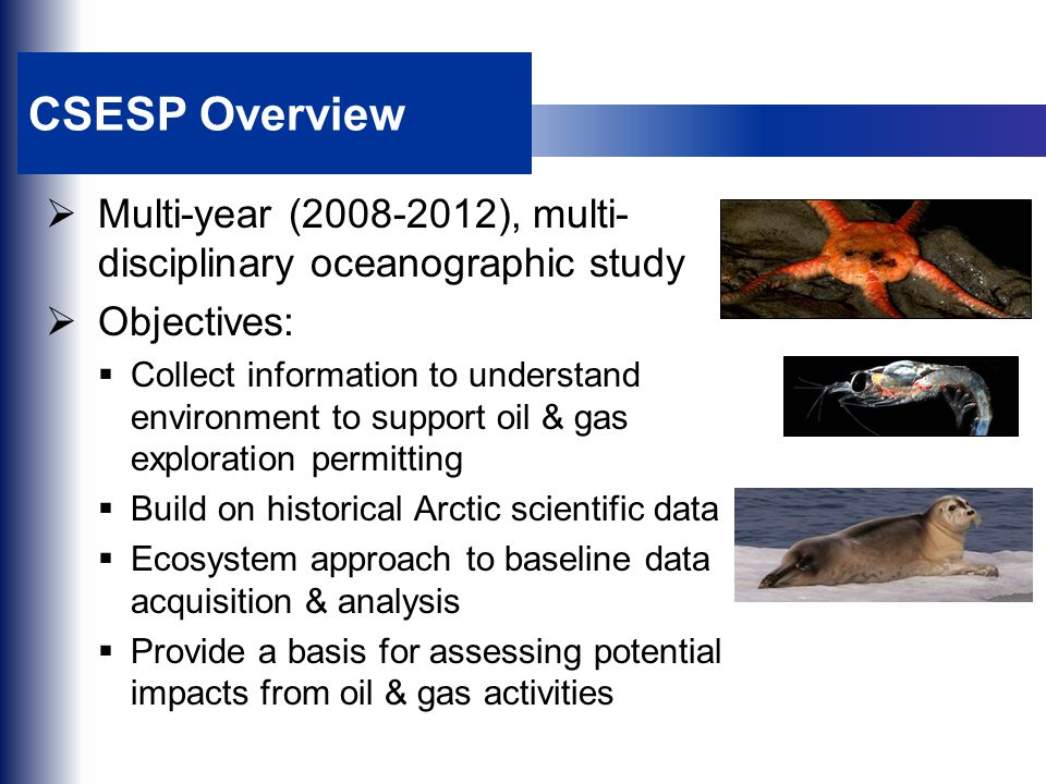 CSESP Overview  Multi-year (2008-2012), multi- disciplinary oceanographic study  Objectives:  Collect information to understand environment to support oil & gas exploration permitting  Build on historical Arctic scientific data  Ecosystem approach to baseline data acquisition & analysis  Provide a basis for assessing potential impacts from oil & gas activities