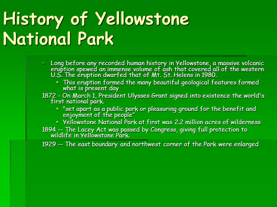 History of Yellowstone National Park  Long before any recorded human history in Yellowstone, a massive volcanic eruption spewed an immense volume of ash that covered all of the western U.S.
