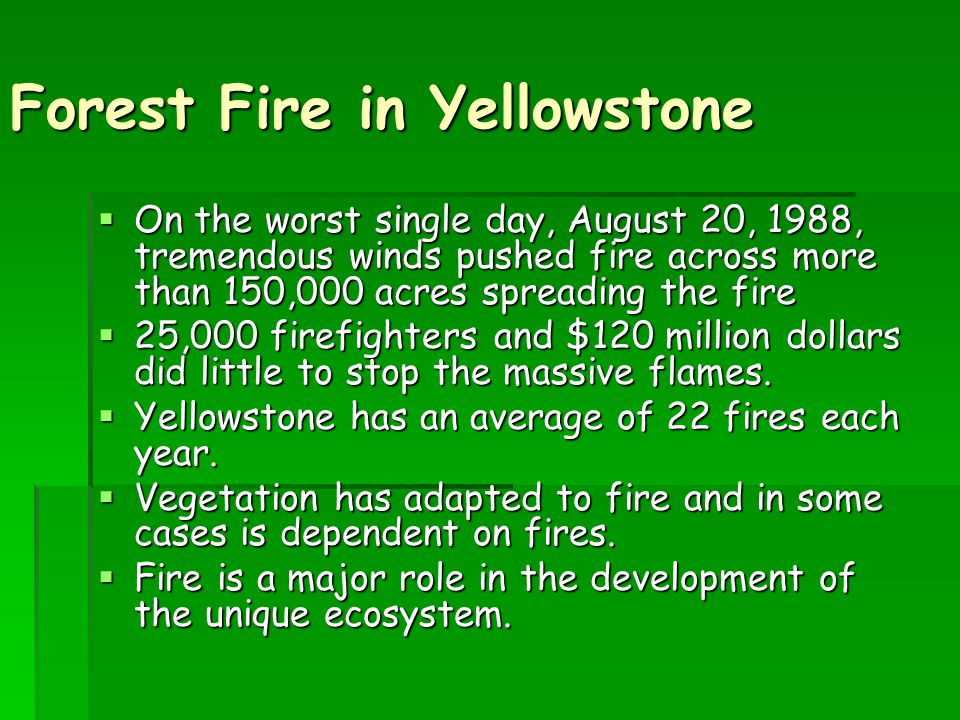 Forest Fire in Yellowstone  On the worst single day, August 20, 1988, tremendous winds pushed fire across more than 150,000 acres spreading the fire  25,000 firefighters and $120 million dollars did little to stop the massive flames.