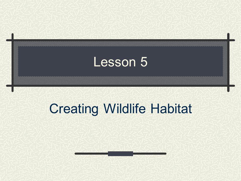 Lesson 5 Creating Wildlife Habitat