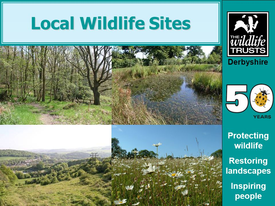 Derbyshire Protecting wildlife Restoring landscapes Inspiring people Local Wildlife Sites