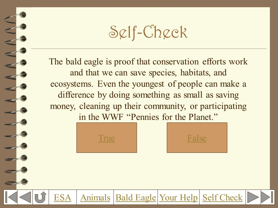 Self-Check The bald eagle is proof that conservation efforts work and that we can save species, habitats, and ecosystems.