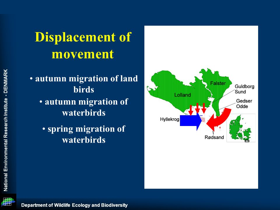 National Environmental Research Institute - DENMARK Department of Wildlife Ecology and Biodiversity autumn migration of land birds autumn migration of