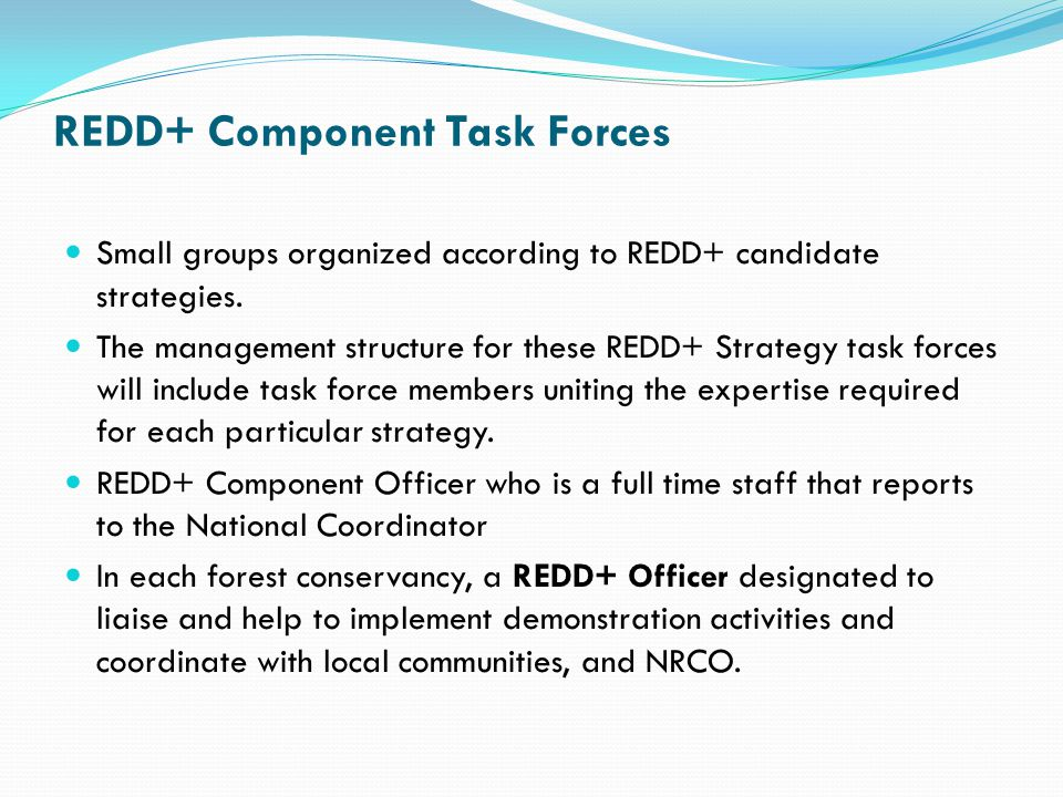 REDD+ Component Task Forces Small groups organized according to REDD+ candidate strategies. The management structure for these REDD+ Strategy task for