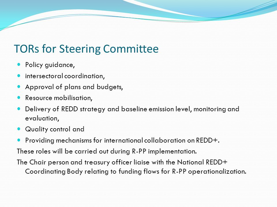 TORs for Steering Committee Policy guidance, intersectoral coordination, Approval of plans and budgets, Resource mobilisation, Delivery of REDD strategy and baseline emission level, monitoring and evaluation, Quality control and Providing mechanisms for international collaboration on REDD+.