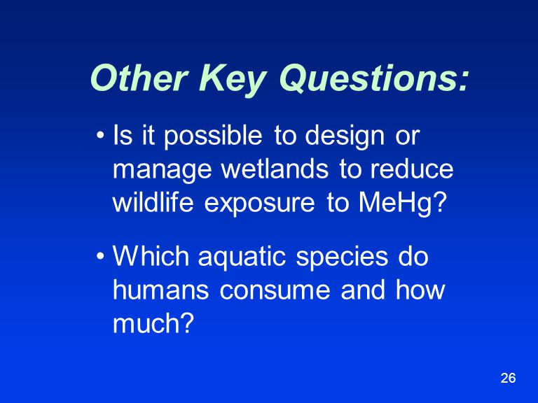 26 Is it possible to design or manage wetlands to reduce wildlife exposure to MeHg? Which aquatic species do humans consume and how much? Other Key Qu