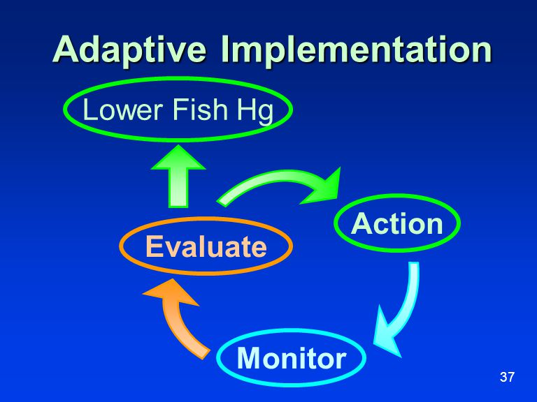 37 Adaptive Implementation Action Evaluate Monitor Lower Fish Hg