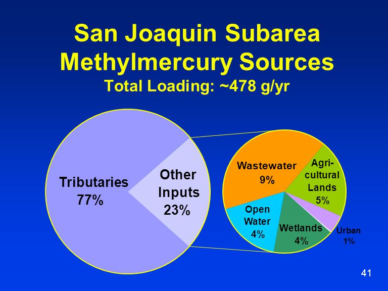41 San Joaquin Subarea Methylmercury Sources Total Loading: ~478 g/yr Tributaries 77% Other Inputs 23% Wastewater 9% Agri- cultural Lands 5% Wetlands