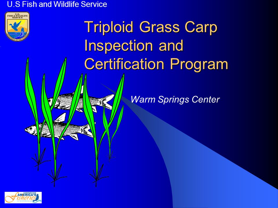 Triploid Grass Carp Inspection and Certification Program U.S Fish and Wildlife Service Warm Springs Center
