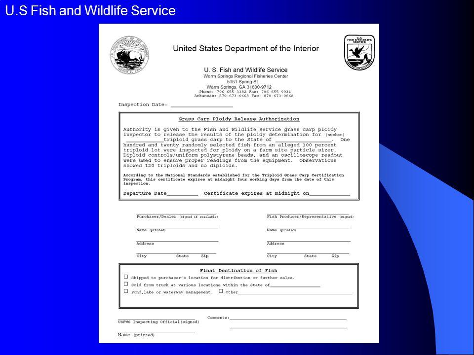 U.S Fish and Wildlife Service