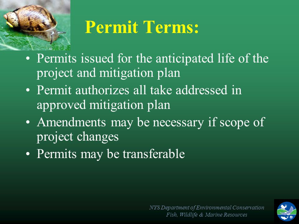 NYS Department of Environmental Conservation Fish, Wildlife & Marine Resources Permit Terms: Permits issued for the anticipated life of the project an