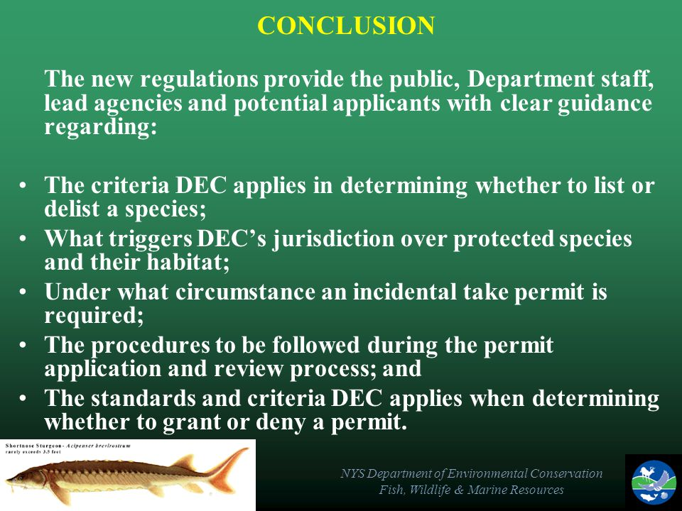NYS Department of Environmental Conservation Fish, Wildlife & Marine Resources CONCLUSION The new regulations provide the public, Department staff, le