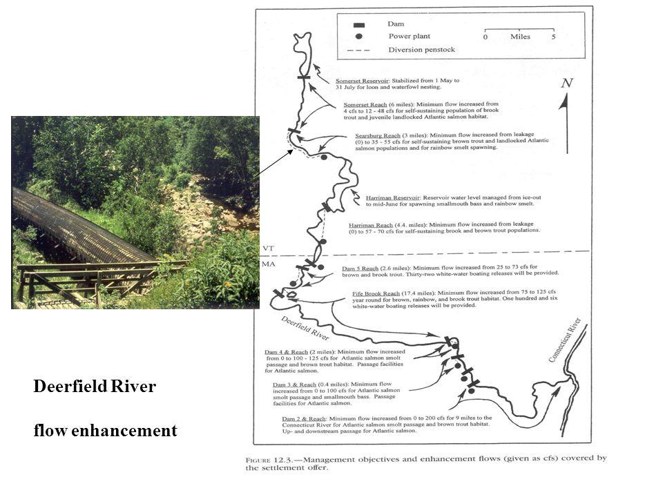 Deerfield River flow enhancement