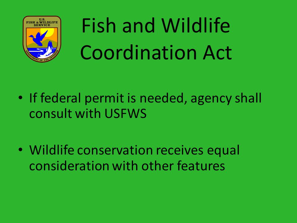 Fish and Wildlife Coordination Act If federal permit is needed, agency shall consult with USFWS Wildlife conservation receives equal consideration with other features