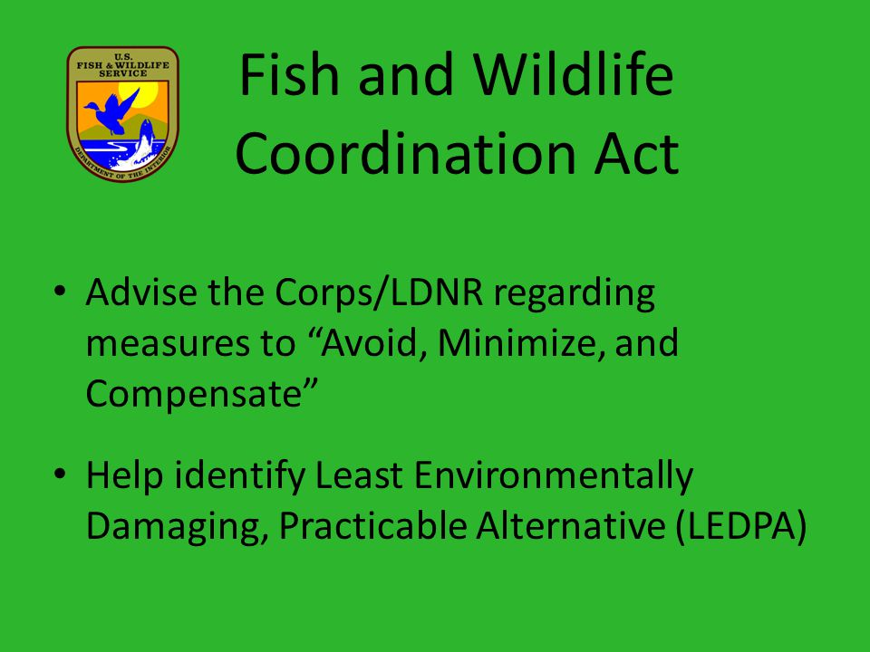 Fish and Wildlife Coordination Act Advise the Corps/LDNR regarding measures to Avoid, Minimize, and Compensate Help identify Least Environmentally Damaging, Practicable Alternative (LEDPA)