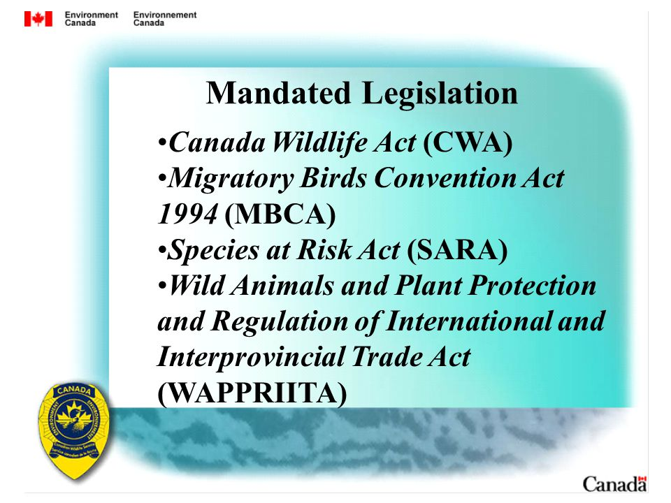 Canada Wildlife Act (CWA) Migratory Birds Convention Act 1994 (MBCA) Species at Risk Act (SARA) Wild Animals and Plant Protection and Regulation of International and Interprovincial Trade Act (WAPPRIITA) Mandated Legislation
