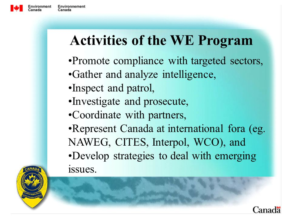 Promote compliance with targeted sectors, Gather and analyze intelligence, Inspect and patrol, Investigate and prosecute, Coordinate with partners, Represent Canada at international fora (eg.