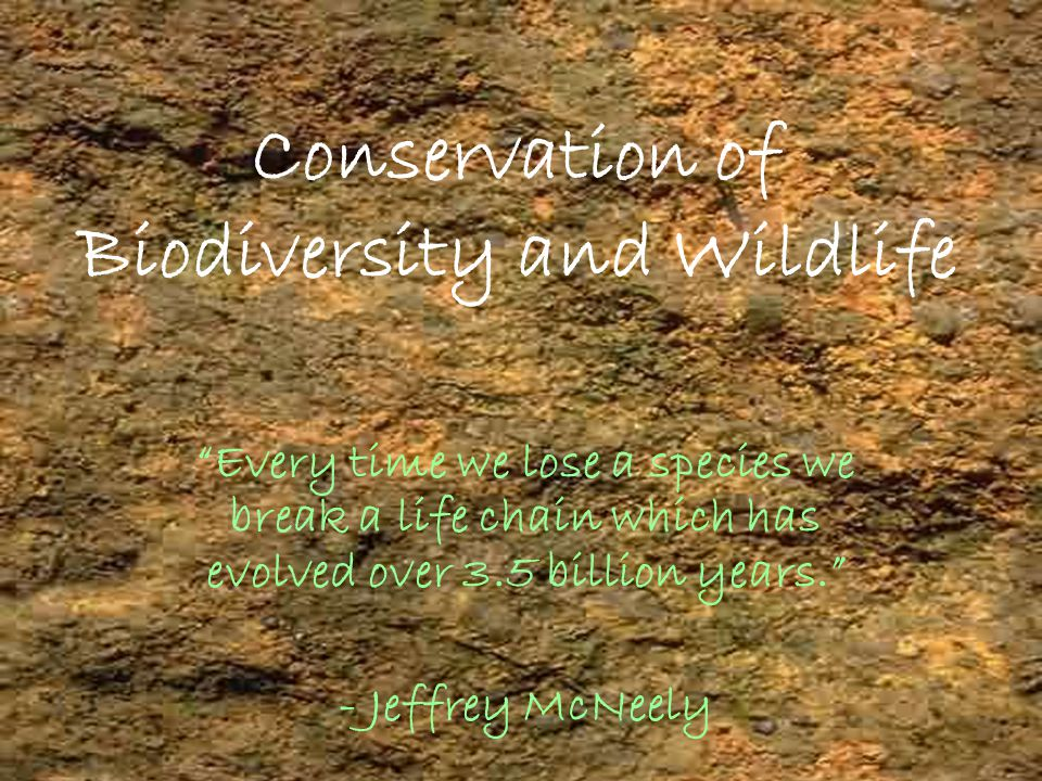 2 Biological Diversity TEXT BOOK  It refers to the totality and variety of life on earth.