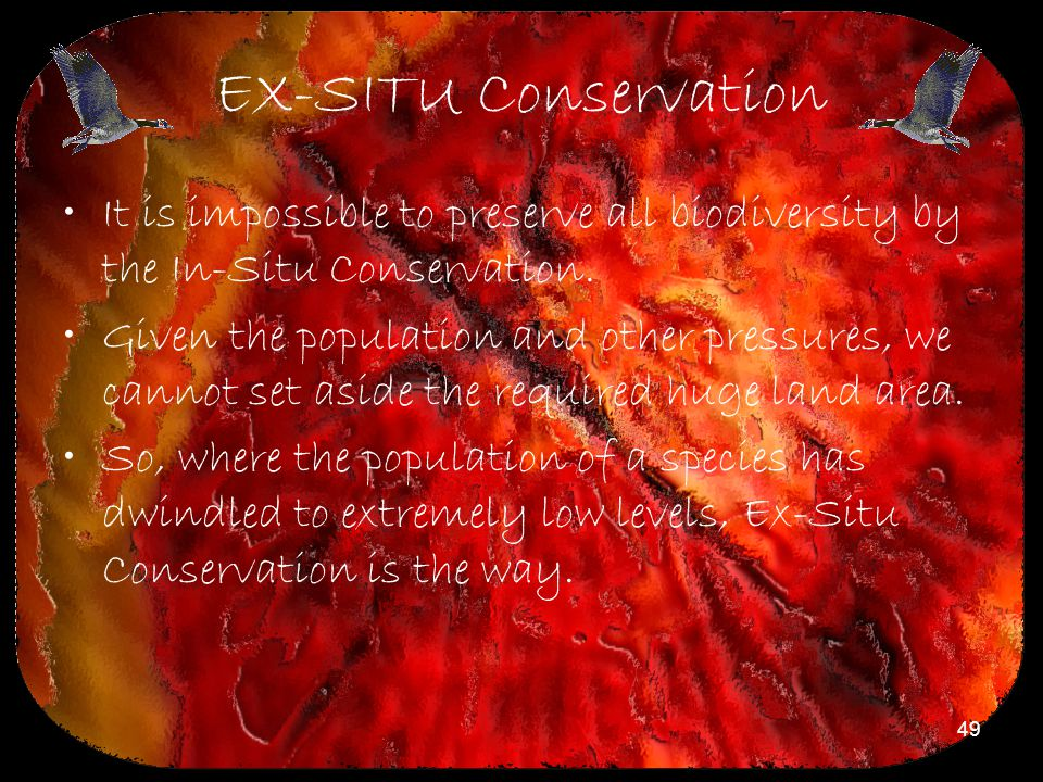 49 EX-SITU Conservation It is impossible to preserve all biodiversity by the In-Situ Conservation. Given the population and other pressures, we cannot