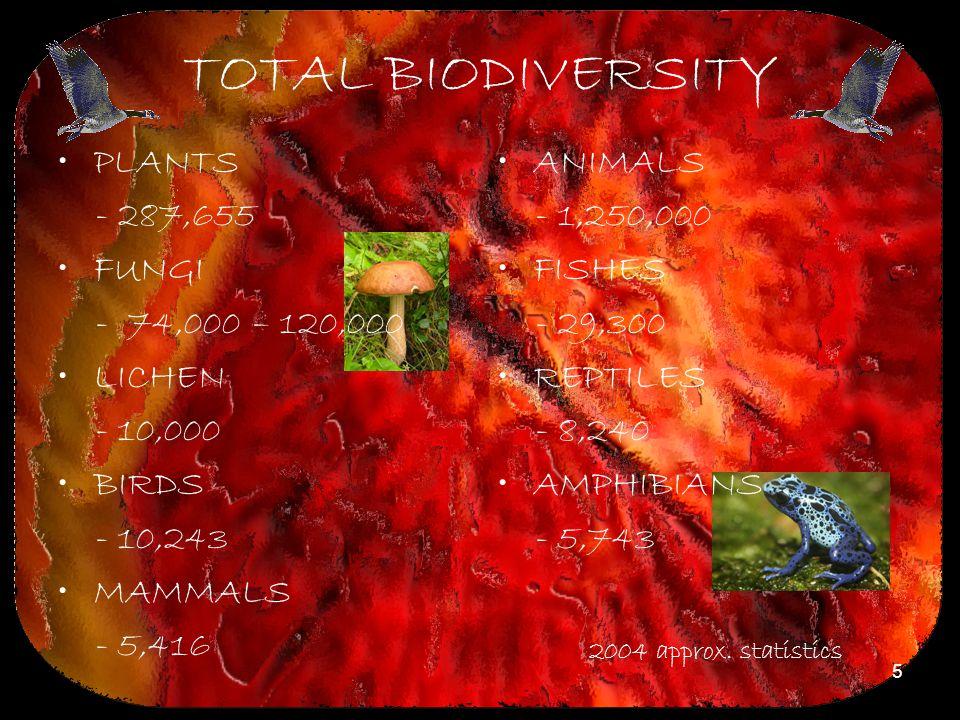 5 TOTAL BIODIVERSITY PLANTS - 287,655 FUNGI - 74,000 – 120,000 LICHEN - 10,000 BIRDS - 10,243 MAMMALS - 5,416 ANIMALS - 1,250,000 FISHES - 29,300 REPT