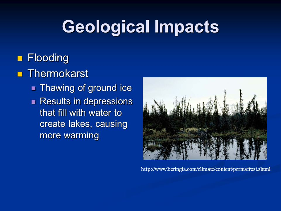 Geological Impacts Flooding Flooding Thermokarst Thermokarst Thawing of ground ice Thawing of ground ice Results in depressions that fill with water to create lakes, causing more warming Results in depressions that fill with water to create lakes, causing more warming http://www.beringia.com/climate/content/permafrost.shtml