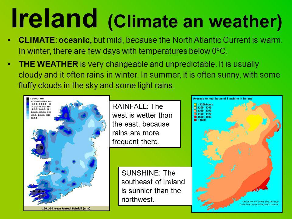 Irish Wildlife: Plants FernsClovers Irish Oak treeIrish Heather Fuchsias