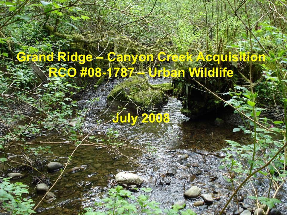 Grand Ridge – Canyon Creek Acquisition RCO #08-1787 – Urban Wildlife July 2008