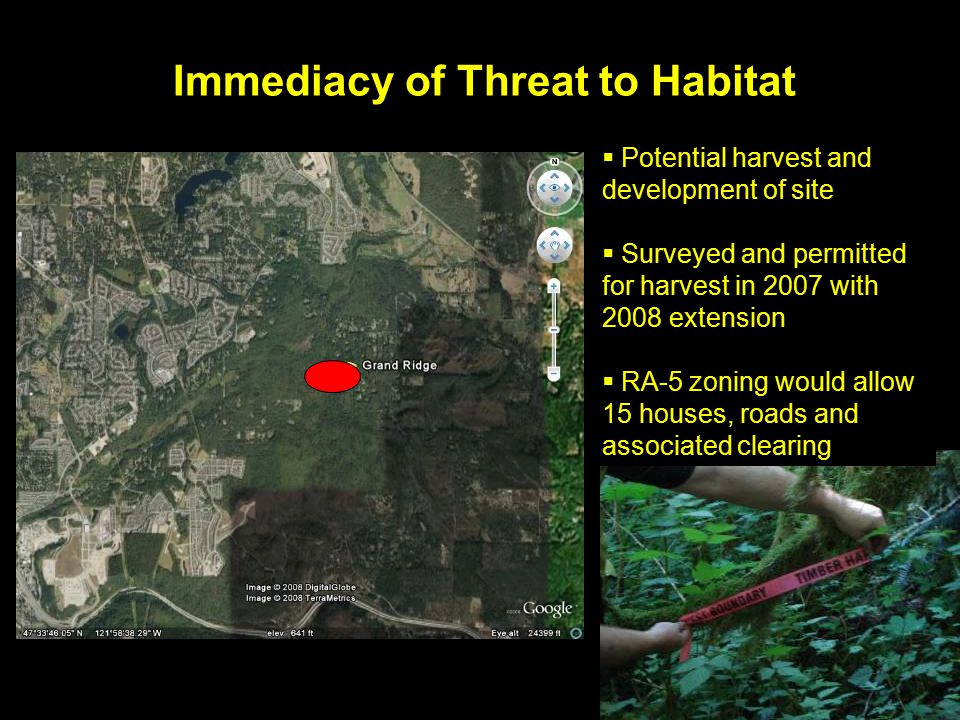 Immediacy of Threat to Habitat  Potential harvest and development of site  Surveyed and permitted for harvest in 2007 with 2008 extension  RA-5 zoning would allow 15 houses, roads and associated clearing