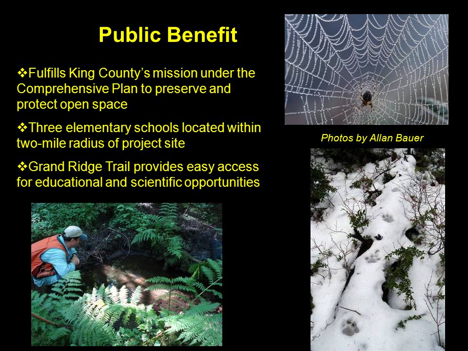 Public Benefit  Fulfills King County's mission under the Comprehensive Plan to preserve and protect open space  Three elementary schools located within two-mile radius of project site  Grand Ridge Trail provides easy access for educational and scientific opportunities Photos by Allan Bauer
