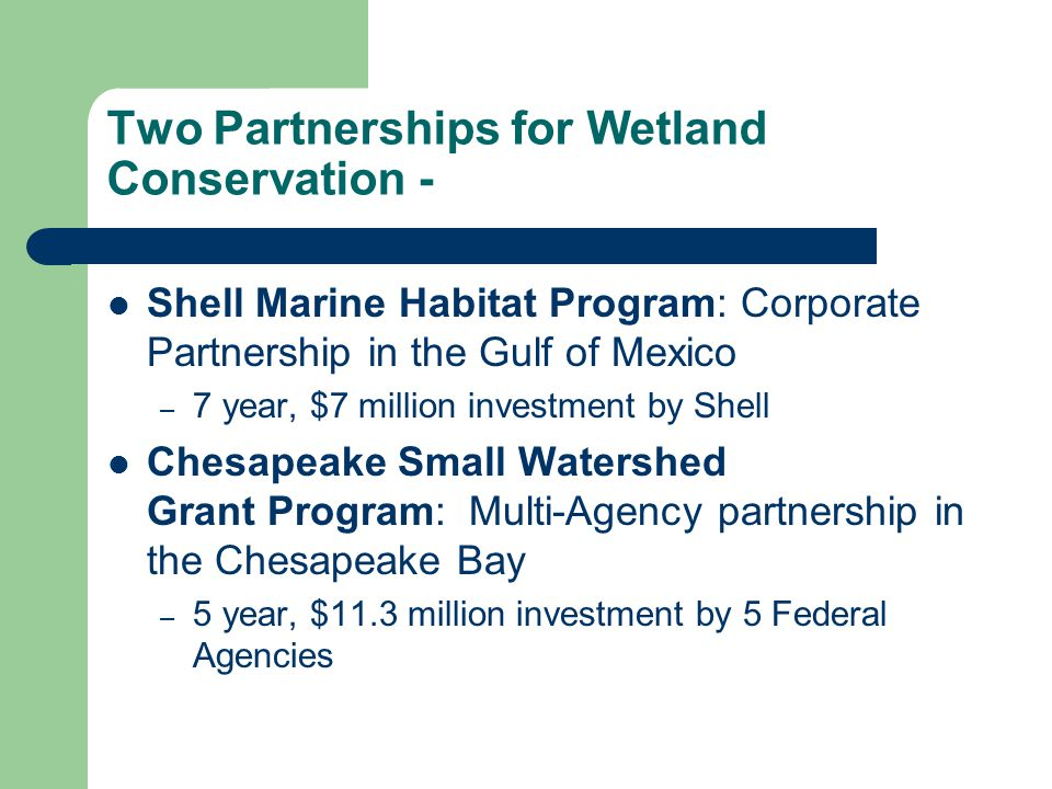 Two Partnerships for Wetland Conservation - Shell Marine Habitat Program: Corporate Partnership in the Gulf of Mexico – 7 year, $7 million investment by Shell Chesapeake Small Watershed Grant Program: Multi-Agency partnership in the Chesapeake Bay – 5 year, $11.3 million investment by 5 Federal Agencies