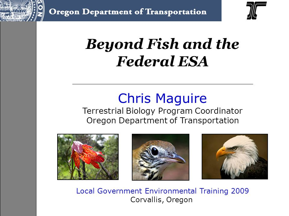 Beyond Fish and the Federal ESA Chris Maguire Terrestrial Biology Program Coordinator Oregon Department of Transportation Local Government Environmental Training 2009 Corvallis, Oregon