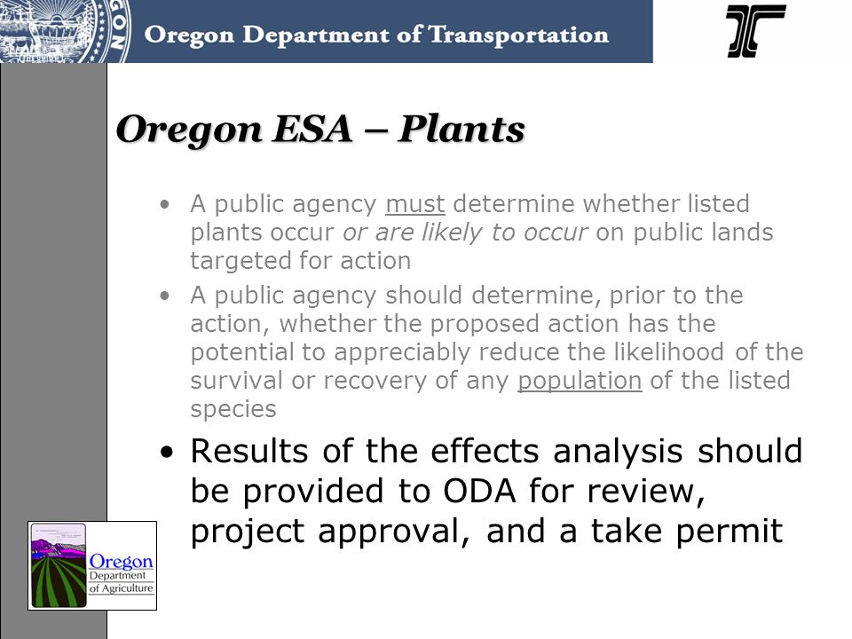 Oregon ESA – Plants A public agency must determine whether listed plants occur or are likely to occur on public lands targeted for action A public agency should determine, prior to the action, whether the proposed action has the potential to appreciably reduce the likelihood of the survival or recovery of any population of the listed species Results of the effects analysis should be provided to ODA for review, project approval, and a take permit