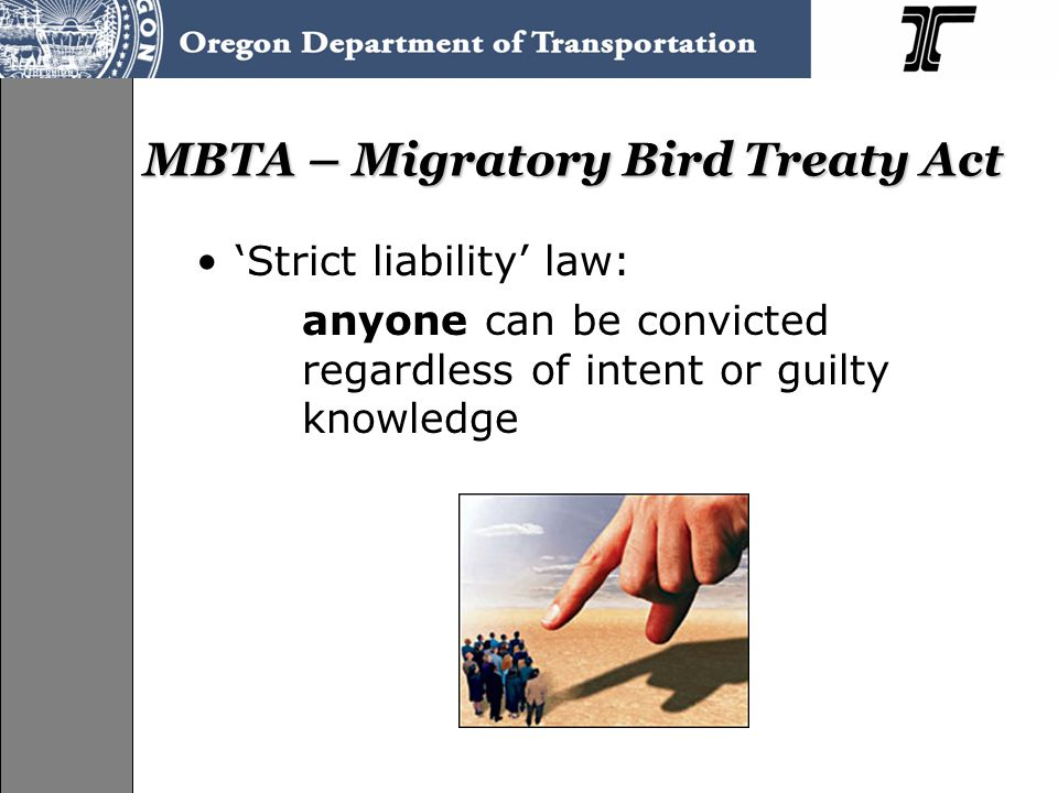 MBTA – Migratory Bird Treaty Act 'Strict liability' law: anyone can be convicted regardless of intent or guilty knowledge