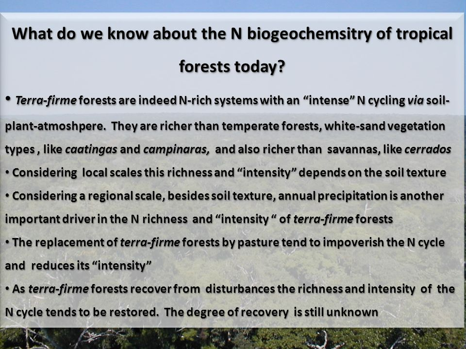 What do we know about the N biogeochemsitry of tropical forests today.
