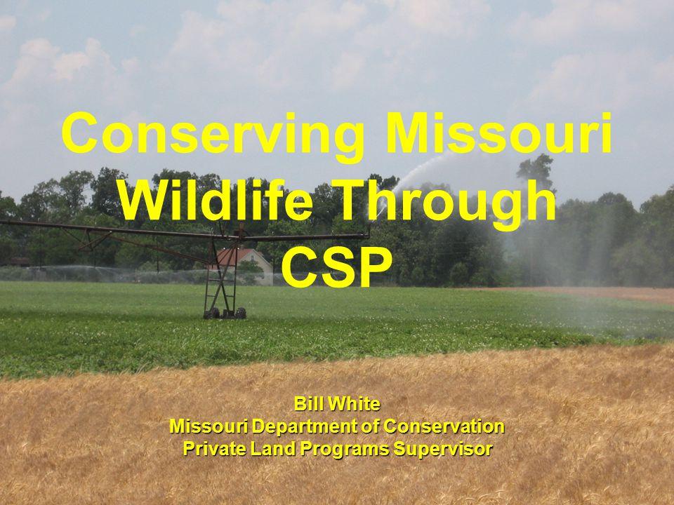Conserving Missouri Wildlife Through CSP Bill White Missouri Department of Conservation Private Land Programs Supervisor