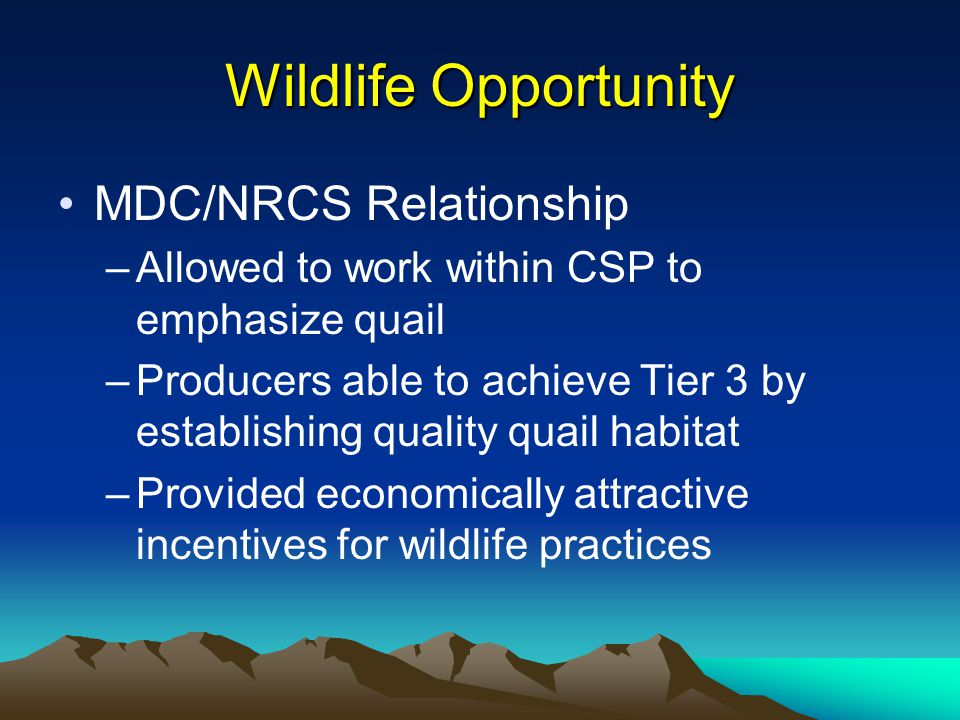 Wildlife Opportunity MDC/NRCS Relationship –Allowed to work within CSP to emphasize quail –Producers able to achieve Tier 3 by establishing quality quail habitat –Provided economically attractive incentives for wildlife practices