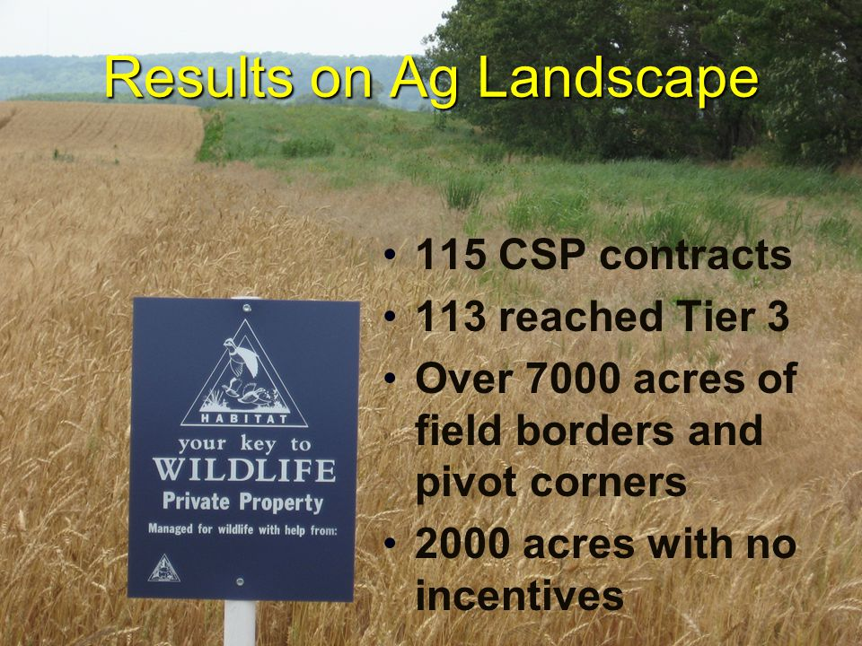 Results on Ag Landscape 115 CSP contracts 113 reached Tier 3 Over 7000 acres of field borders and pivot corners 2000 acres with no incentives