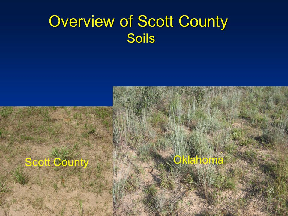 CSP Wildlife Enhancements USDA Staff aggressive about selling wildlife –Area Conservationist and local watershed committee supported wildlife practices –Allowed contract modifications in 2006 – Scott County Soil and Water Conservation District Handled seed Provided equipment