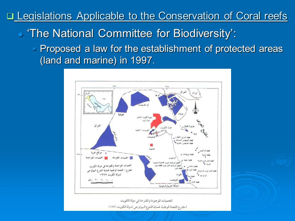 ● 'The National Committee for Biodiversity':  Proposed a law for the establishment of protected areas (land and marine) in 1997.
