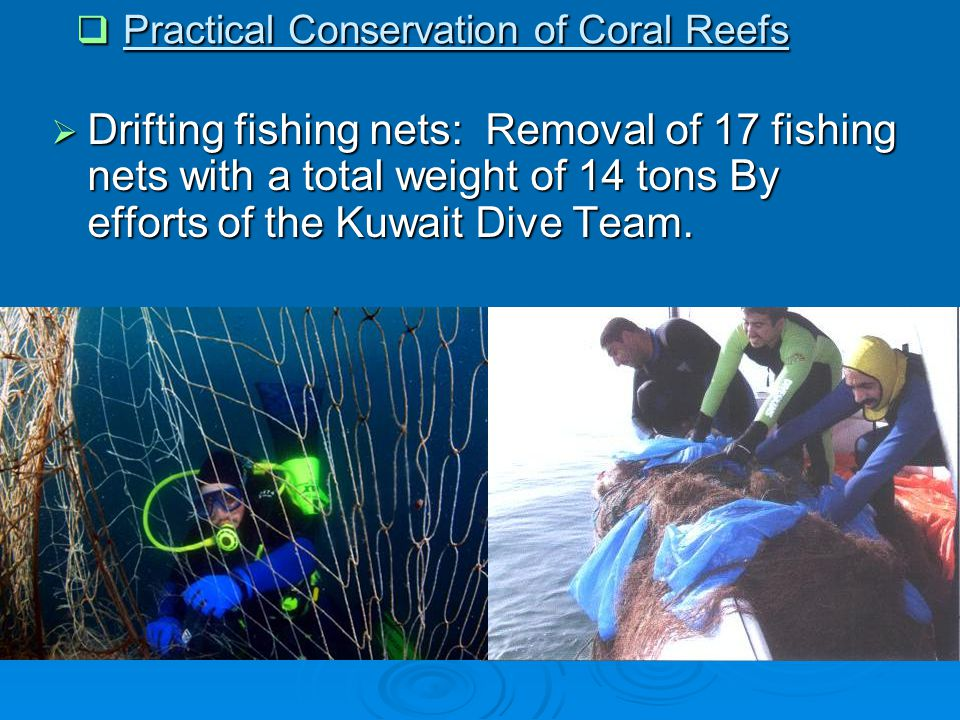  Drifting fishing nets: Removal of 17 fishing nets with a total weight of 14 tons By efforts of the Kuwait Dive Team.  Practical Conservation of Cor