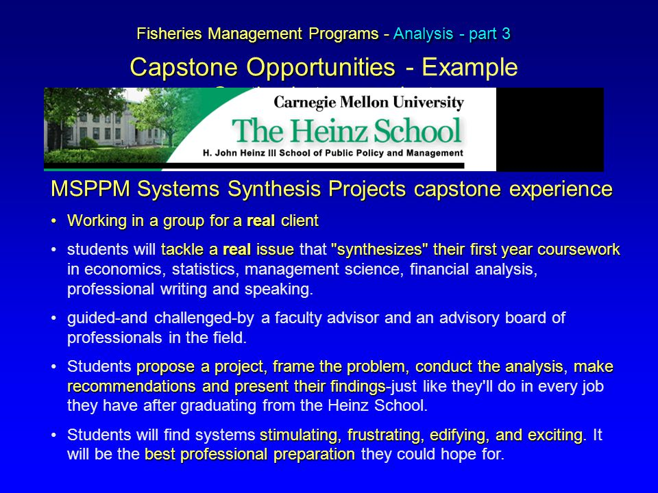 Fisheries Management Programs - Analysis - part 3 Capstone Opportunities Fisheries Management Programs - Analysis - part 3 Capstone Opportunities - Example Synthesis team project MSPPM Systems Synthesis Projectscapstone experience MSPPM Systems Synthesis Projects capstone experience Working in a group for a real clientWorking in a group for a real client tackle a real issue synthesizes their first year courseworkstudents will tackle a real issue that synthesizes their first year coursework in economics, statistics, management science, financial analysis, professional writing and speaking.