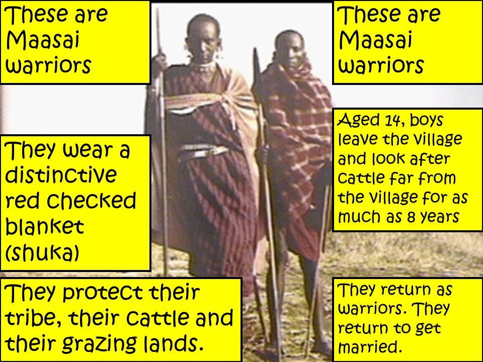 These are Maasai warriors They wear a distinctive red checked blanket (shuka) These are Maasai warriors They protect their tribe, their cattle and their grazing lands.