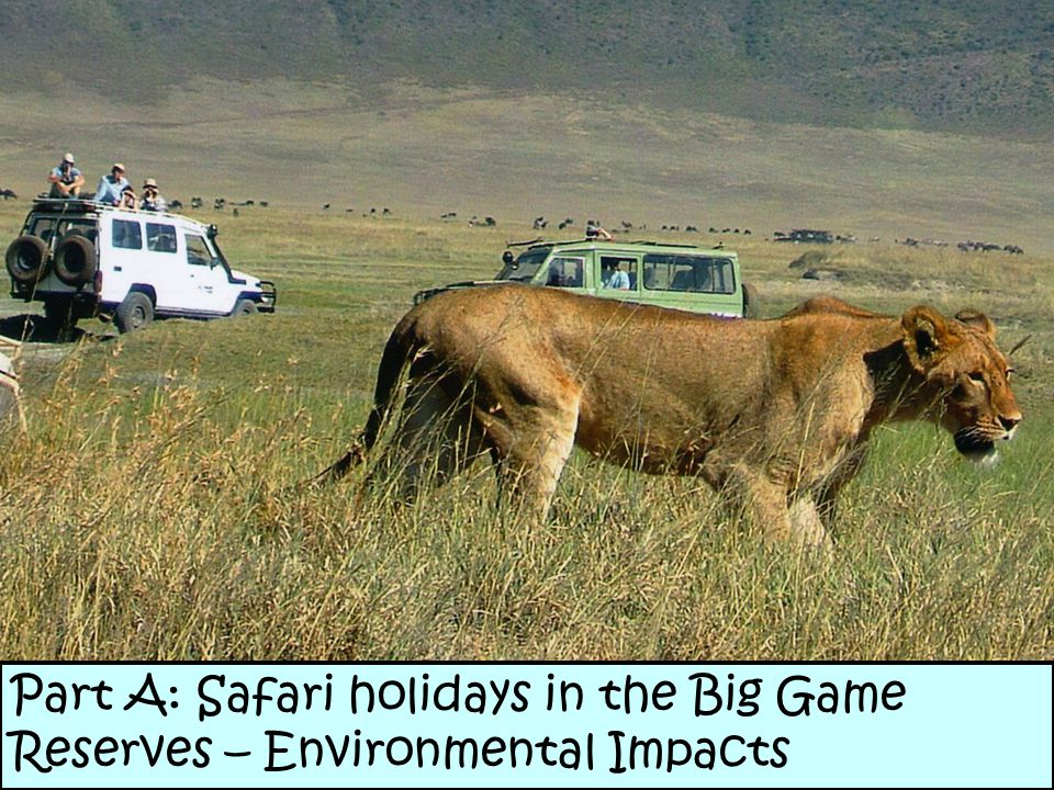 Part A: Safari holidays in the Big Game Reserves – Environmental Impacts