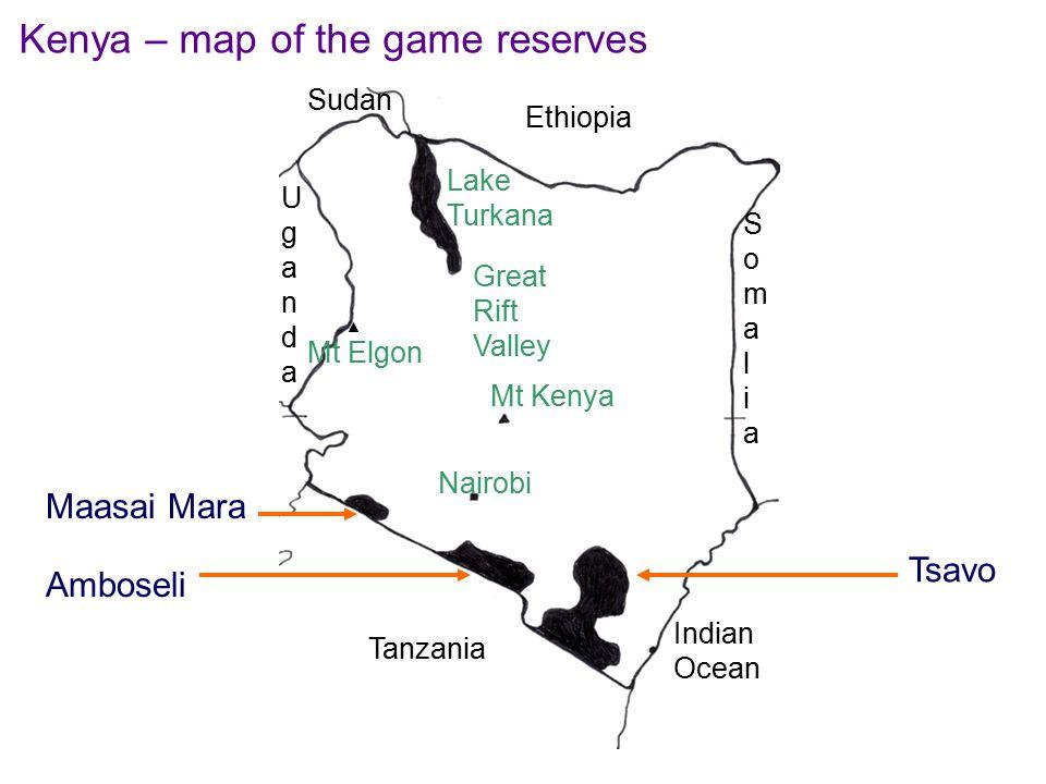 Tanzania Sudan Mt Kenya Nairobi Indian Ocean Lake Turkana Mt Elgon Ethiopia SomaliaSomalia Great Rift Valley UgandaUganda Maasai Mara Amboseli Tsavo Kenya – map of the game reserves