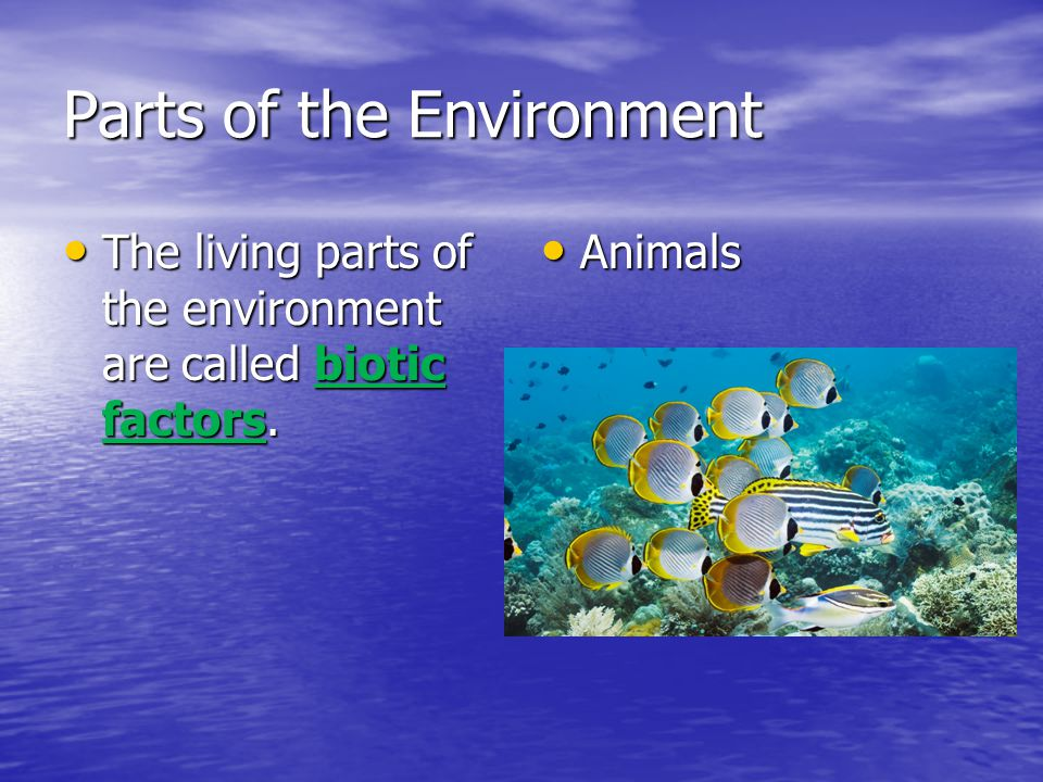 Parts of the Environment The living parts of the environment are called biotic factors.