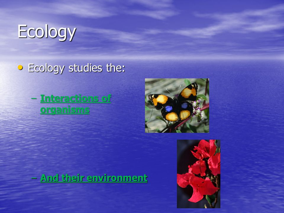 Ecology Ecology studies the: Ecology studies the: –Interactions of organisms –And their environment