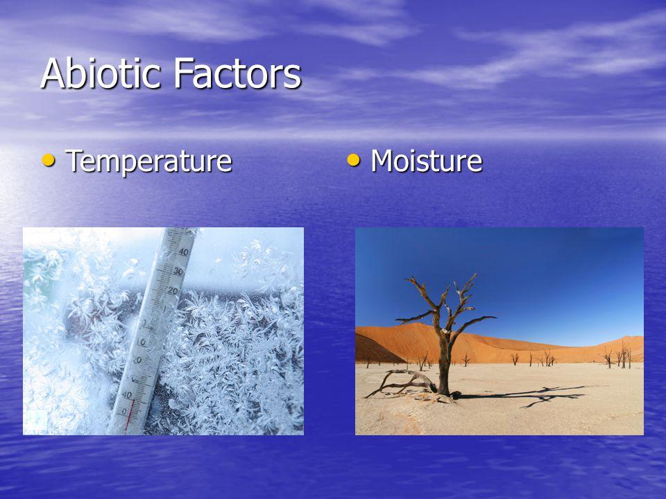 Abiotic Factors Temperature Temperature Moisture Moisture