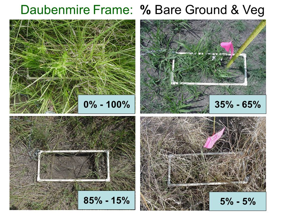 Daubenmire Frame: % Bare Ground & Veg 0% - 100% 85% - 15% 5% - 5% 35% - 65%
