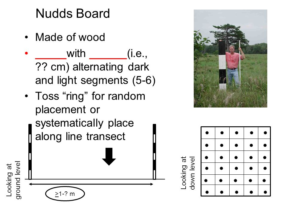 Nudds Board Made of wood _____with ______(i.e., ?.