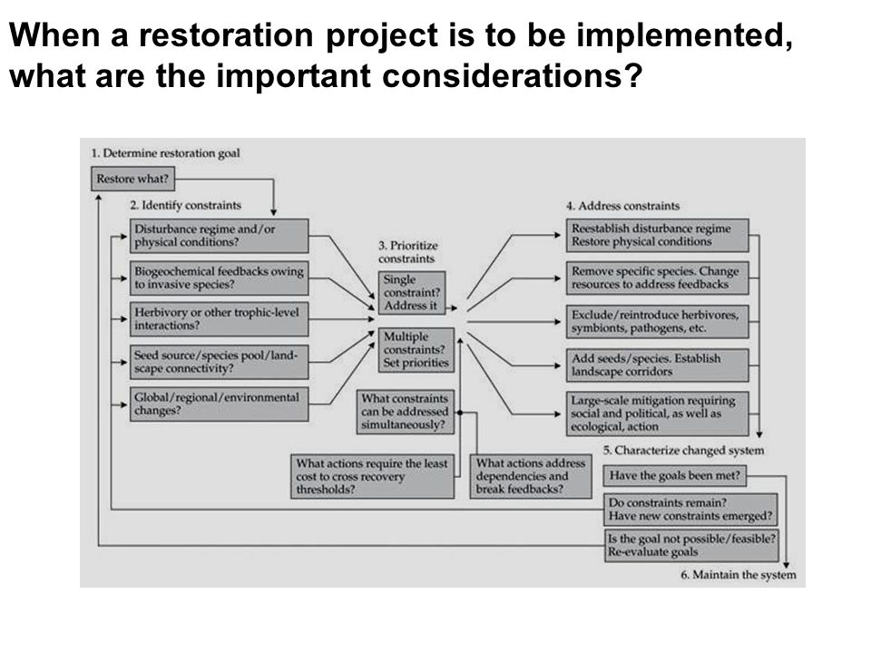When a restoration project is to be implemented, what are the important considerations